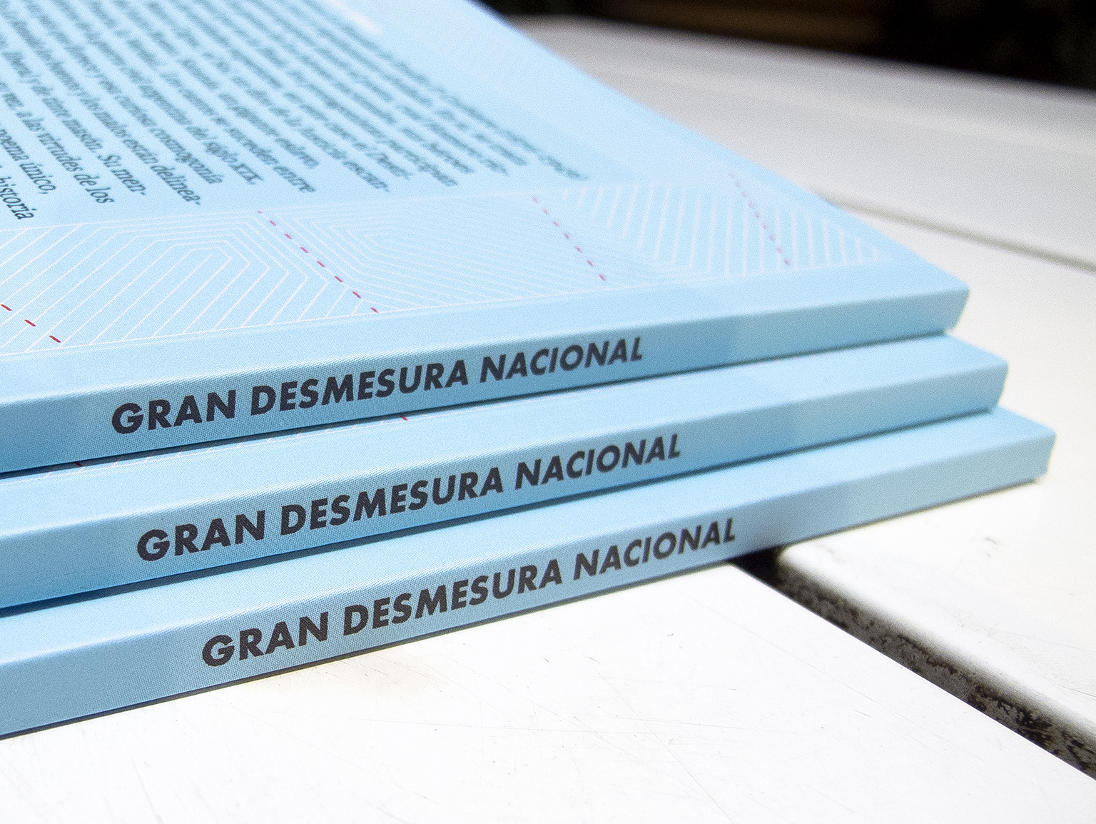 Gran Desmesura Nacional is an essay by Vicente Mario di Maggio on the poem La Rozaida by Emilio P. Corbiere